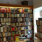 antikvarijat i knjizara brala ducan dezmanova