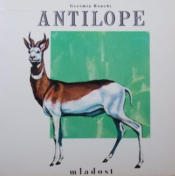 Ronchi-Antilope
