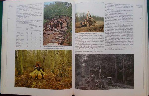 Šume u Hrvatskoj(2)