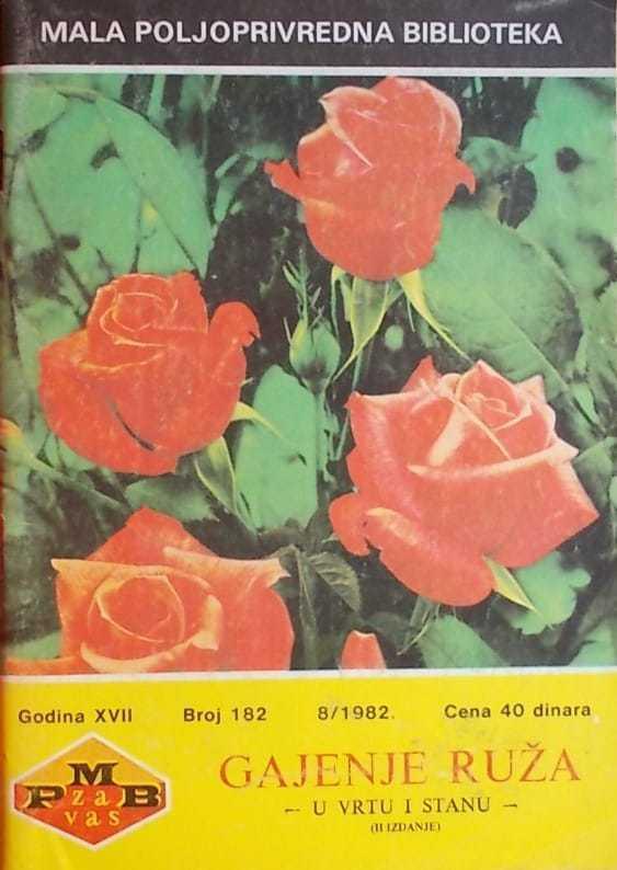 Gajenje ruža