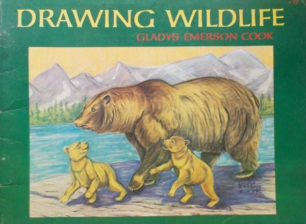 Cook-Drawing Wildlife
