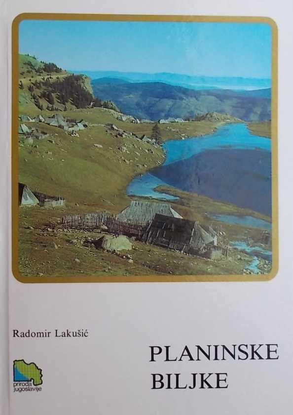 Lakušić-Planinske biljke