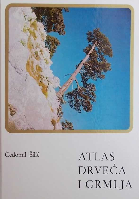 Silic-Atlas drveća i grmlja