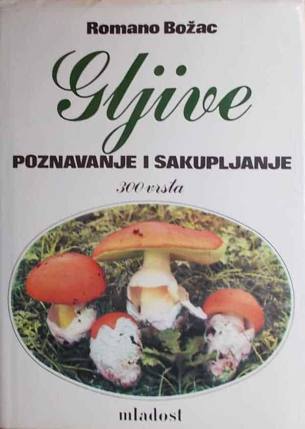 Božac: Gljive poznavanje i sakupljanje