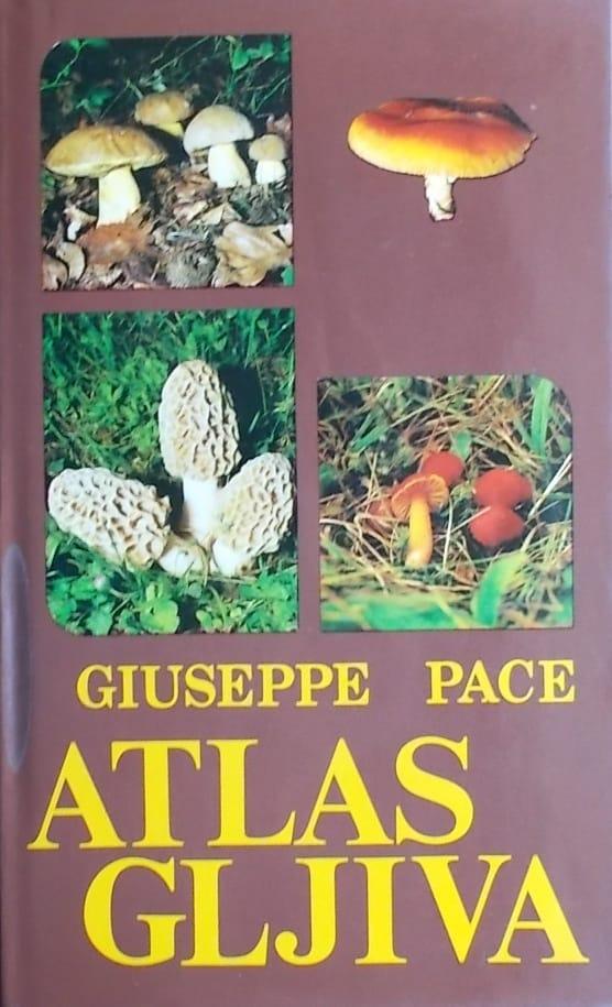 Pace-Atlas gljiva