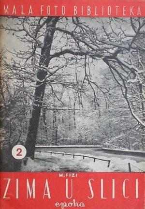 Fizi-Zima u slici