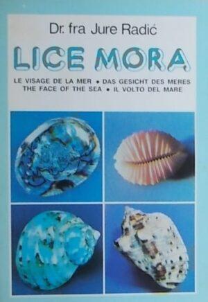 Radić: Lice mora