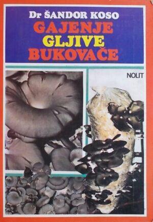 Koso: Gajenje gljive bukovače