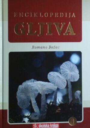 Božac-Enciklopedija gljiva